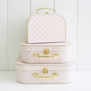 Carry Case Set - Pink and Gold Spot
